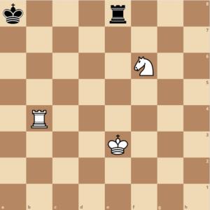 Der König steht im Schach